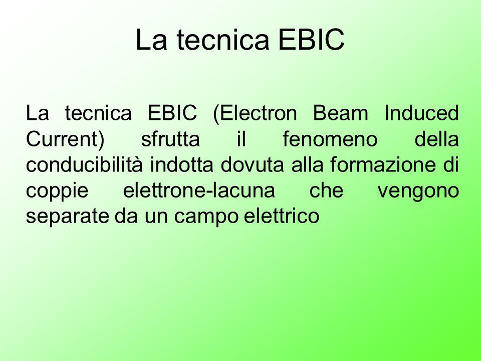 La tecnica EBIC