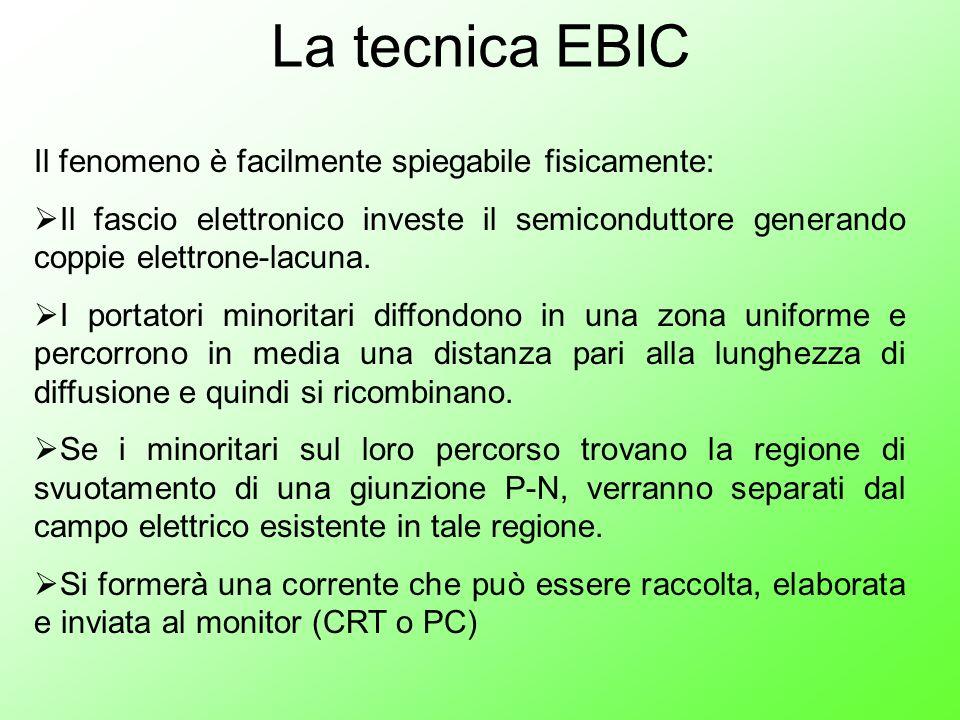 La tecnica EBIC Il fenomeno è facilmente spiegabile fisicamente: