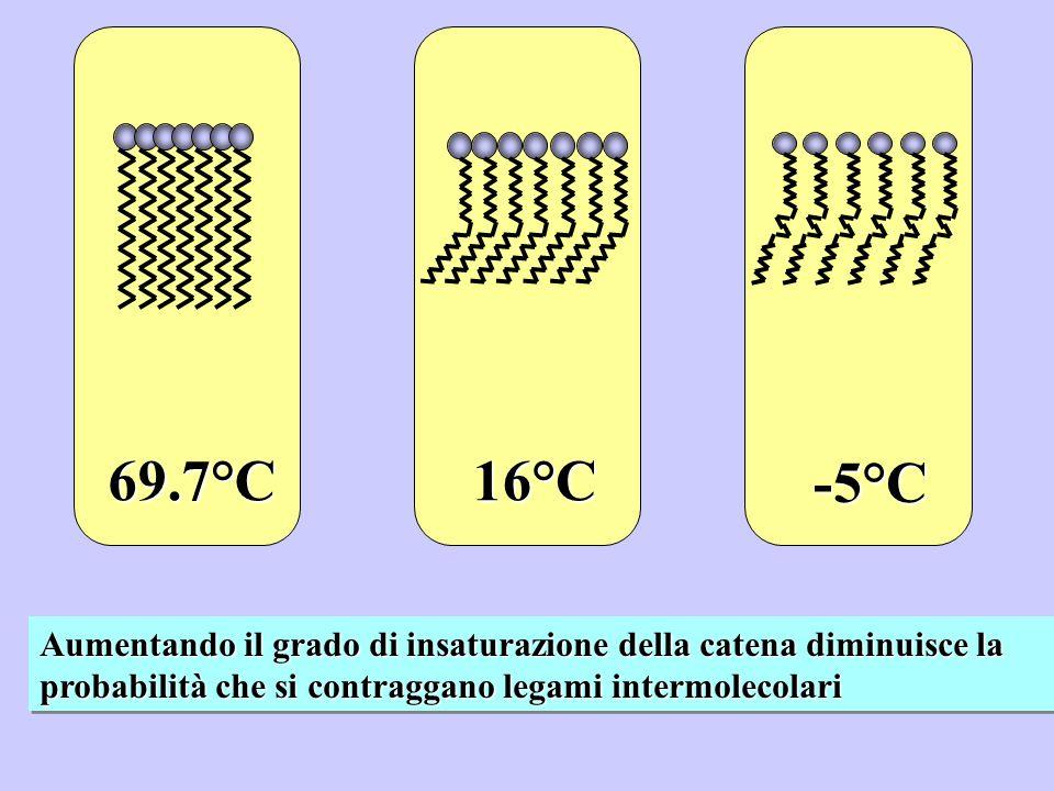 69.7°C 16°C. -5°C.