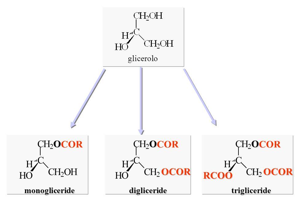 C H O COR C H O COR OCOR C H O COR OCOR RCOO glicerolo monogliceride