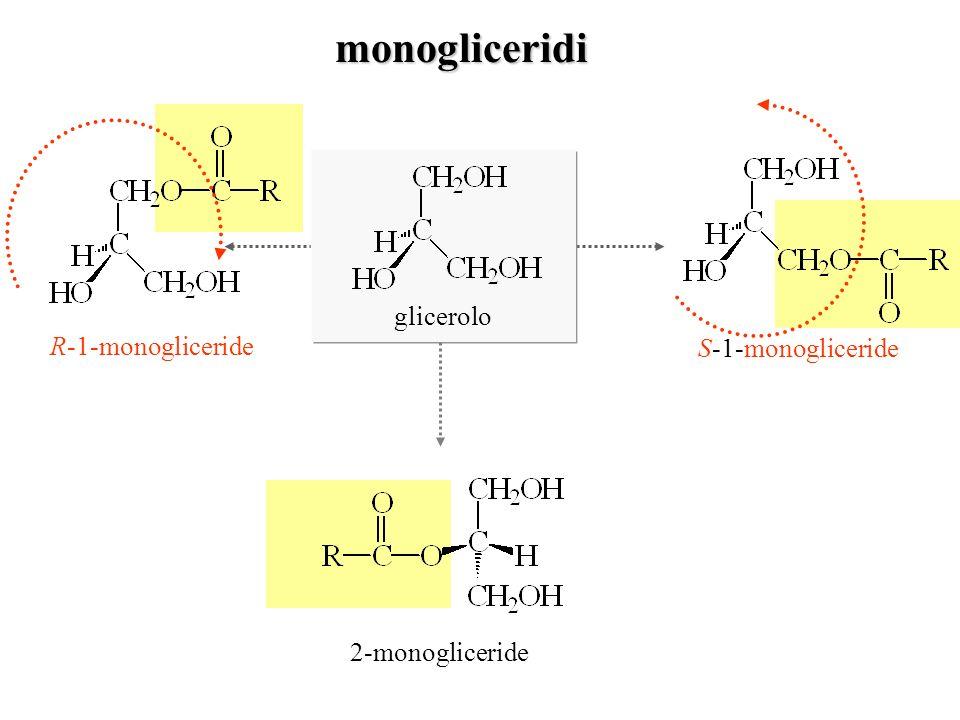 monogliceridi glicerolo R-1-monogliceride S-1-monogliceride