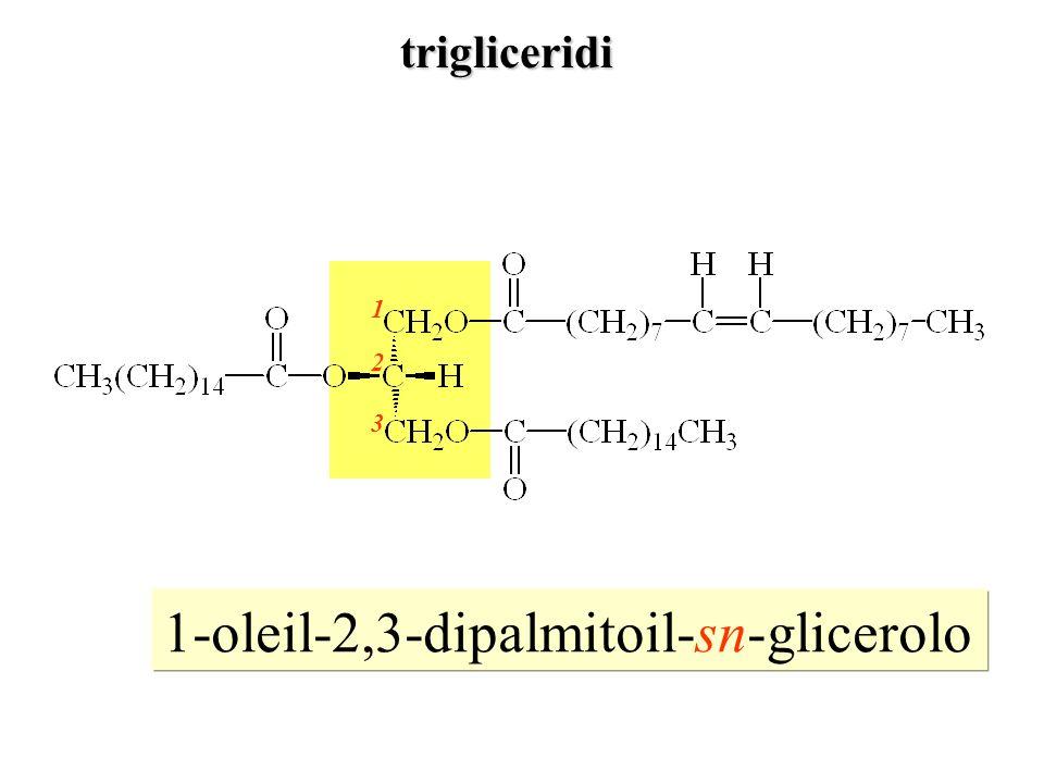 1-oleil-2,3-dipalmitoil-sn-glicerolo