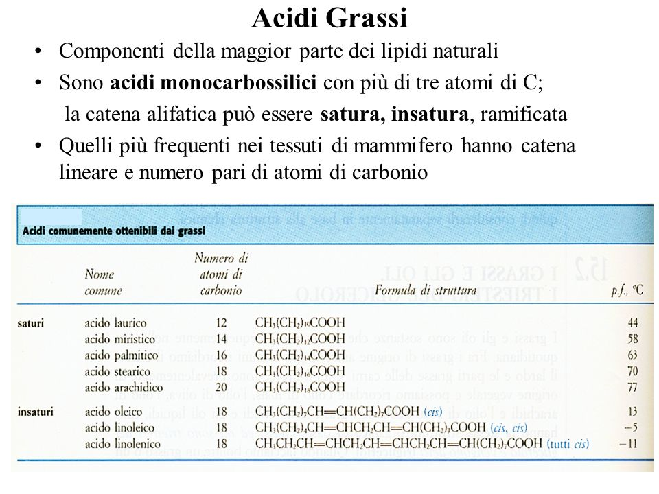 Acidi Grassi Componenti della maggior parte dei lipidi naturali