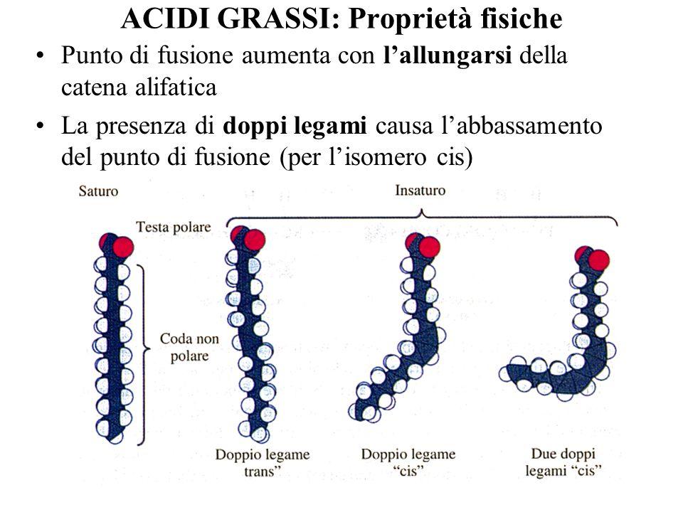 ACIDI GRASSI: Proprietà fisiche