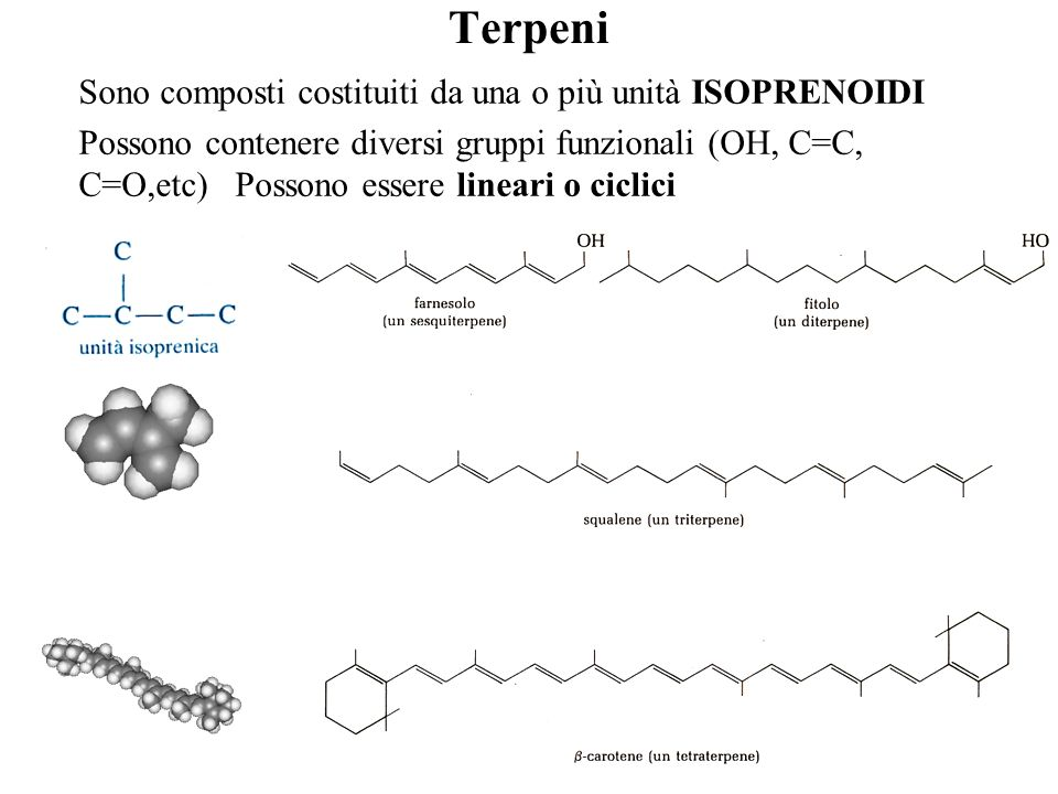 Terpeni Sono composti costituiti da una o più unità ISOPRENOIDI