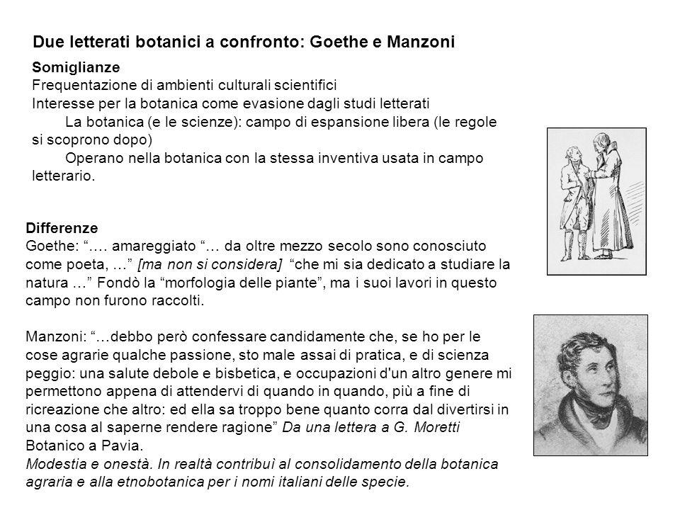 Due letterati botanici a confronto: Goethe e Manzoni