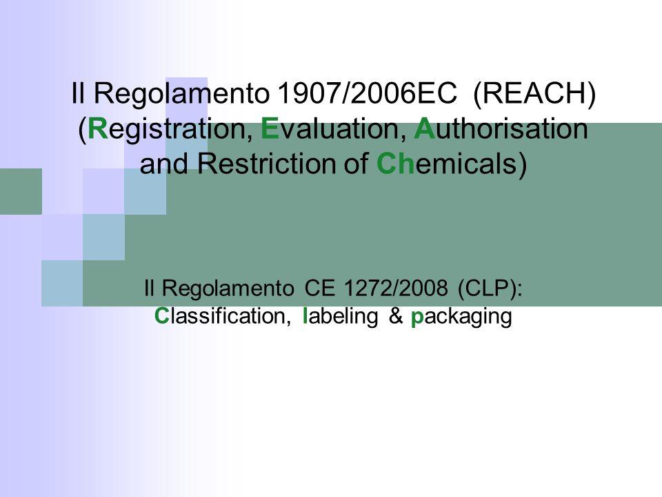 Il Regolamento 1907/2006EC (REACH)