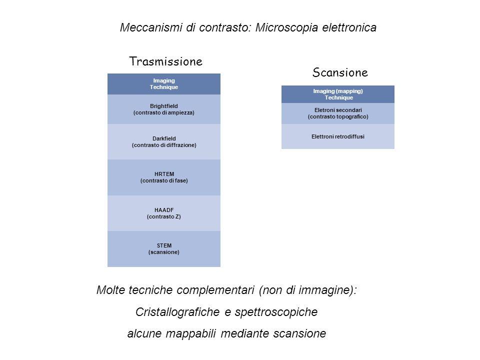 Meccanismi di contrasto: Microscopia elettronica