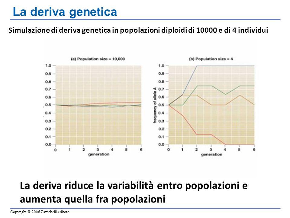 La deriva genetica Simulazione di deriva genetica in popolazioni diploidi di 10000 e di 4 individui.