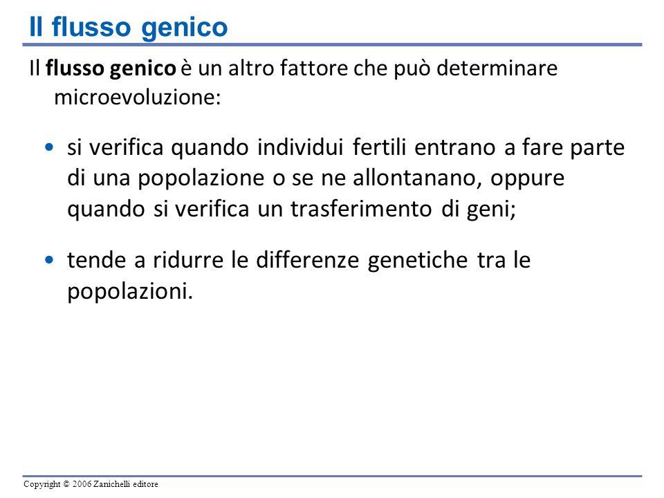 Il flusso genico Il flusso genico è un altro fattore che può determinare microevoluzione: