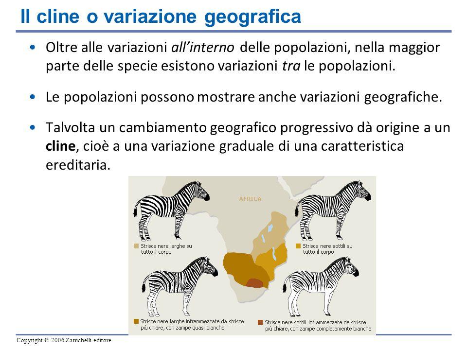 Il cline o variazione geografica