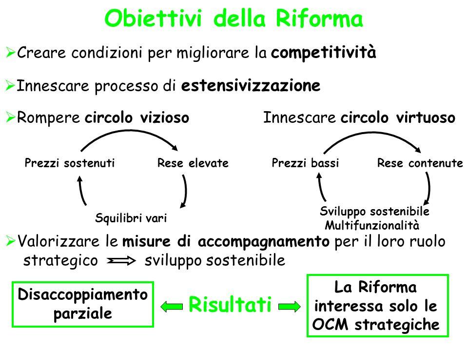 Obiettivi della Riforma
