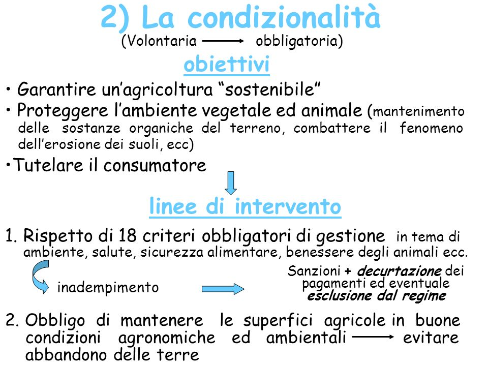 2) La condizionalità obiettivi linee di intervento