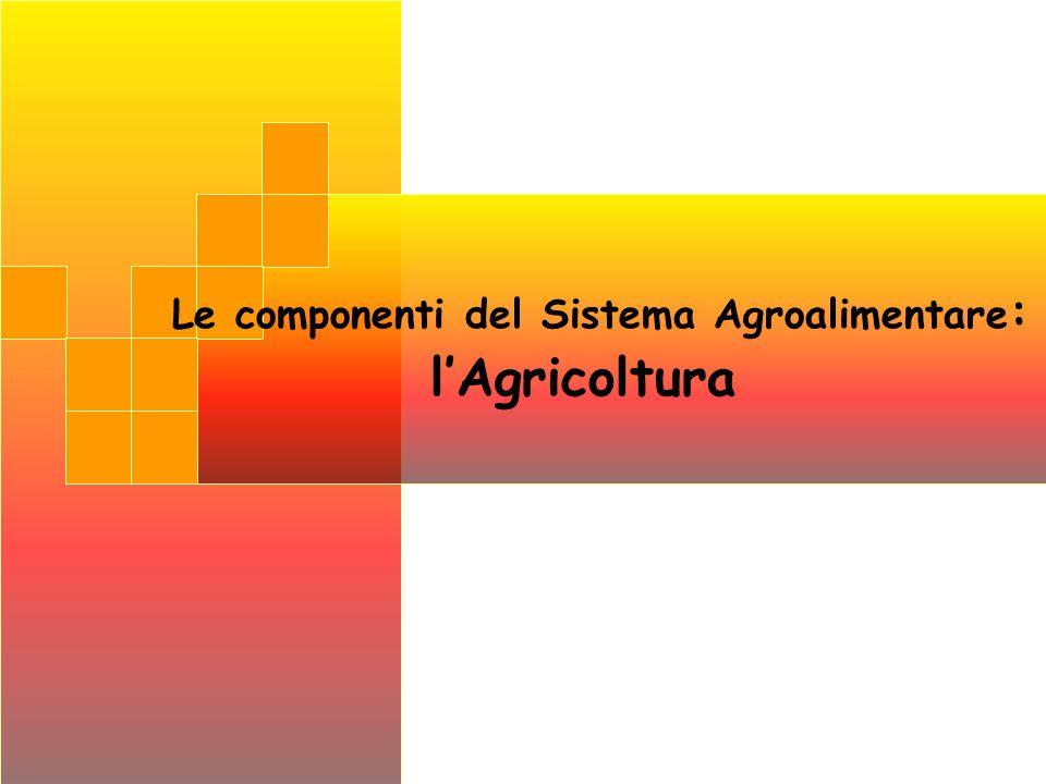 Le componenti del Sistema Agroalimentare: l'Agricoltura