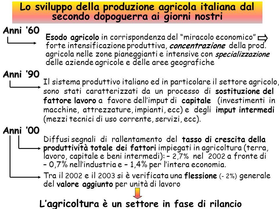 L'agricoltura è un settore in fase di rilancio