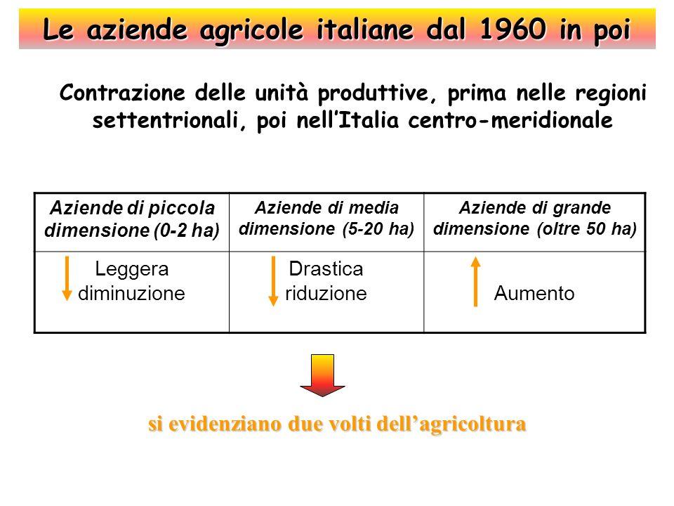Le aziende agricole italiane dal 1960 in poi