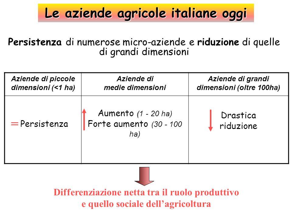 Le aziende agricole italiane oggi