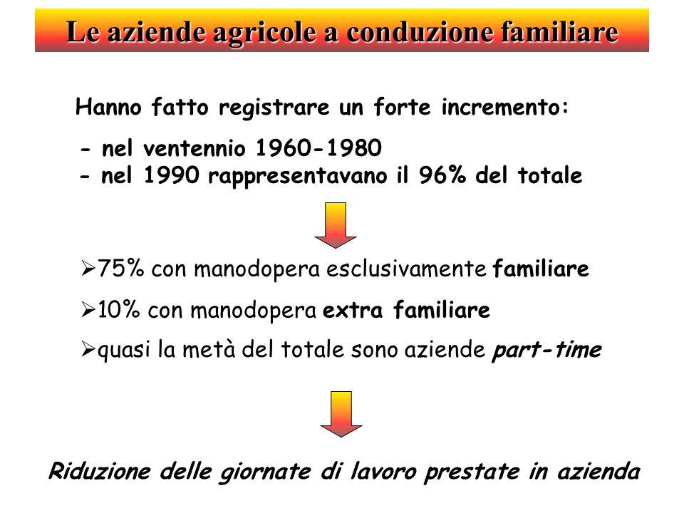 Le aziende agricole a conduzione familiare