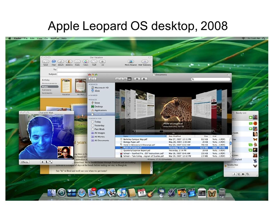 Apple Leopard OS desktop, 2008