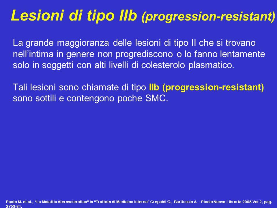 Lesioni di tipo IIb (progression-resistant)