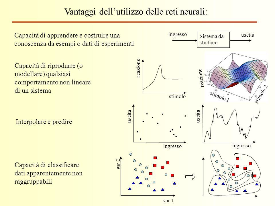 Vantaggi dell'utilizzo delle reti neurali: