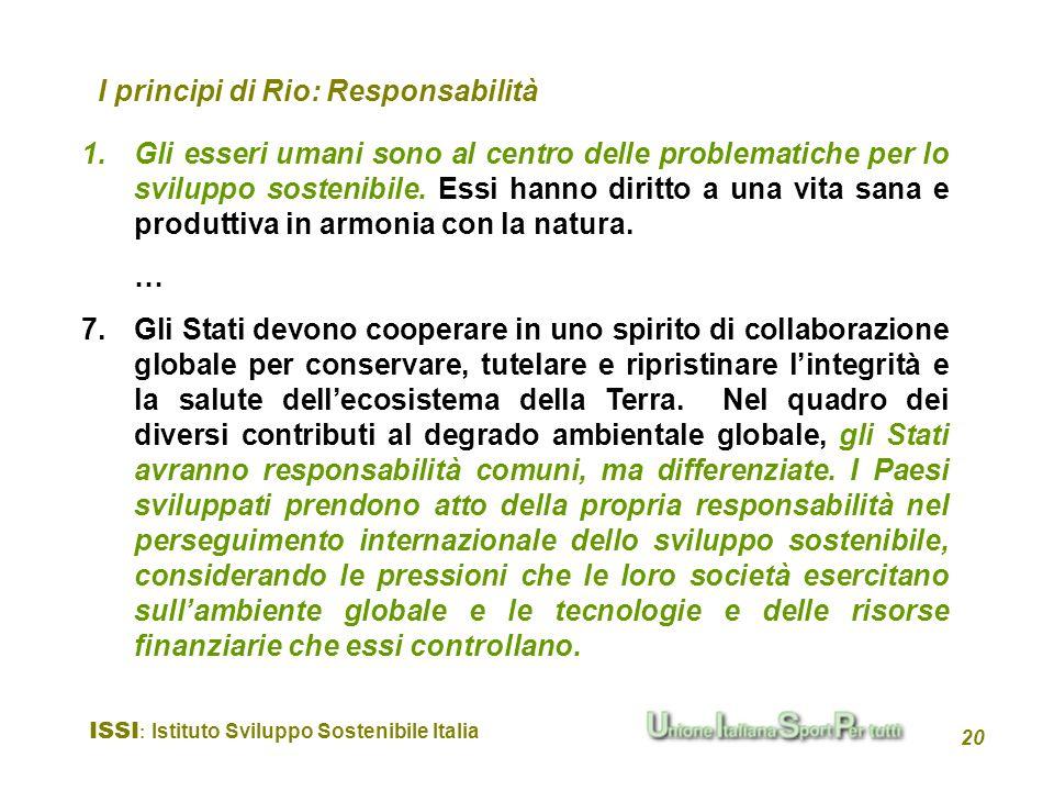 I principi di Rio: Responsabilità