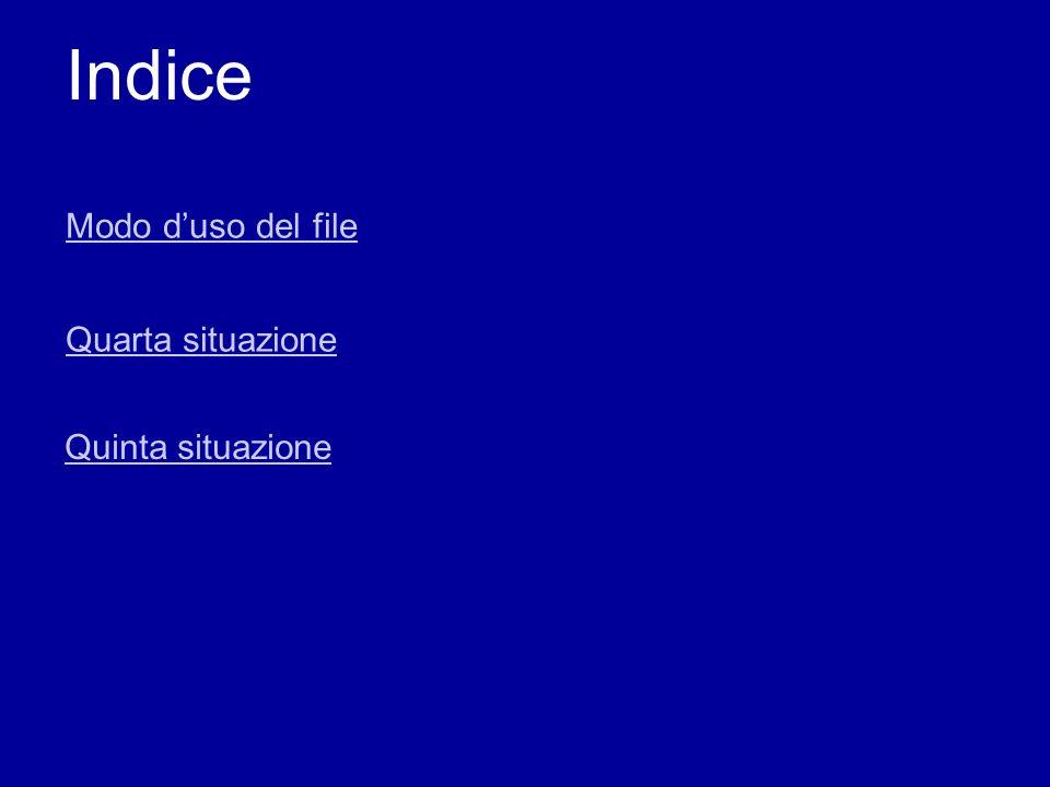 Indice Modo d'uso del file Quarta situazione Quinta situazione