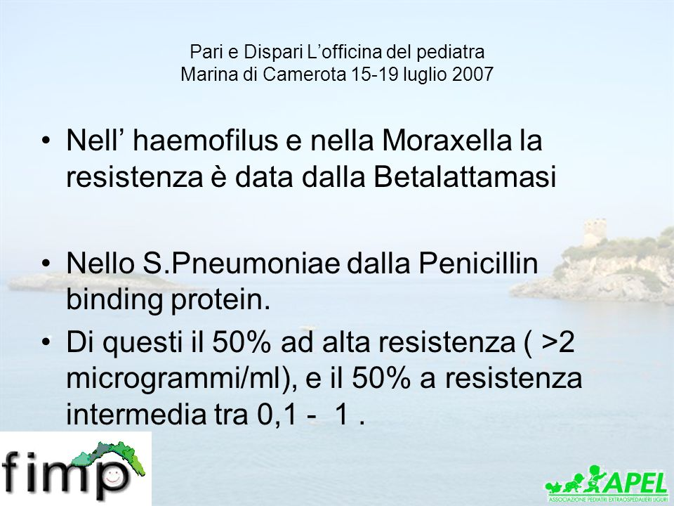 Nello S.Pneumoniae dalla Penicillin binding protein.