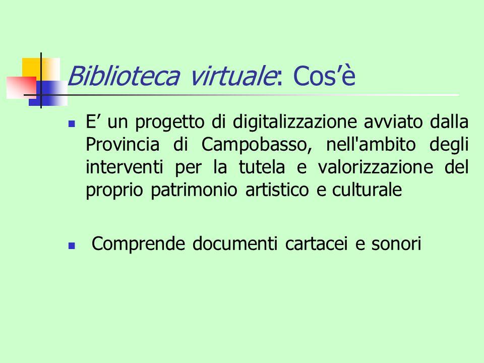 Biblioteca virtuale: Cos'è