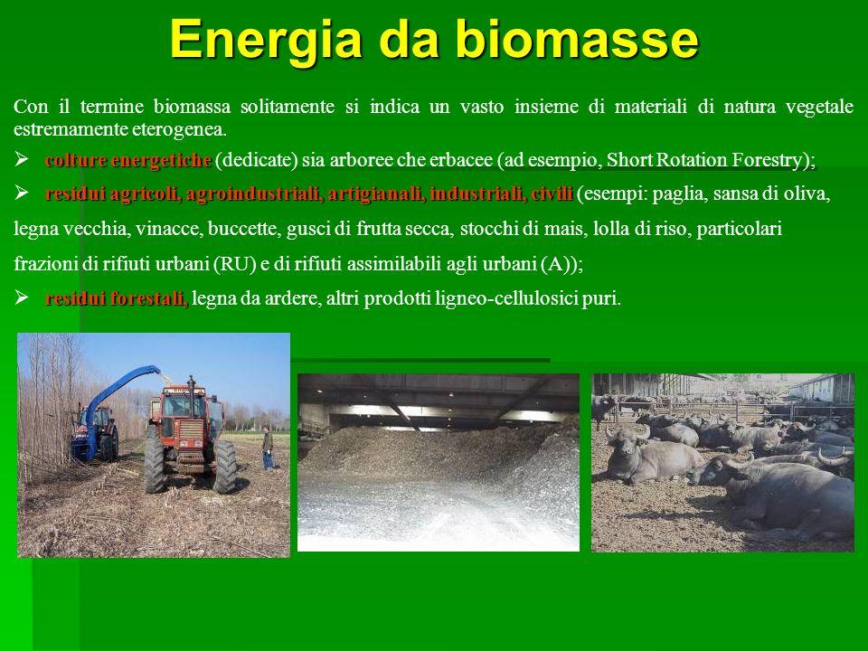 SEA Progetti S.r.l.Energia da biomasse.