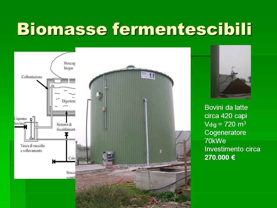 Biomasse fermentescibili