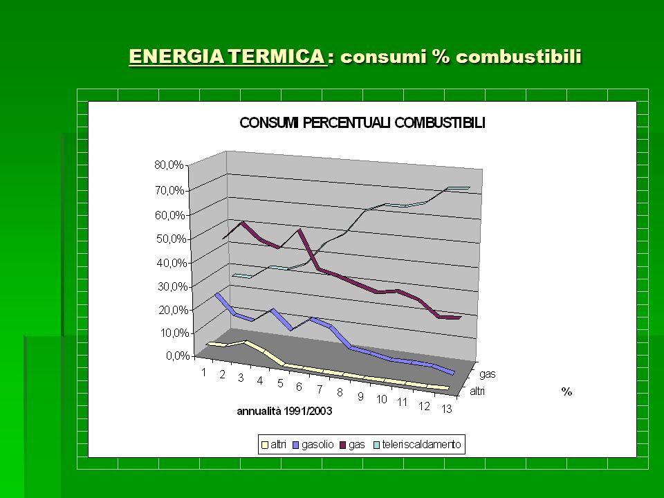 ENERGIA TERMICA : consumi % combustibili