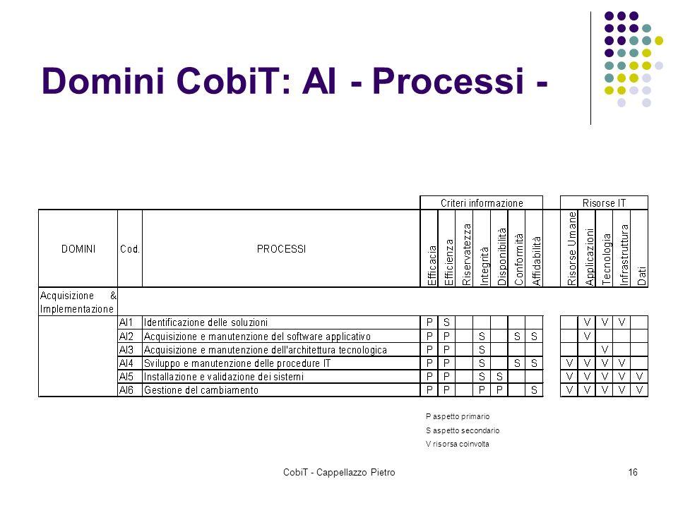 Domini CobiT: AI - Processi -