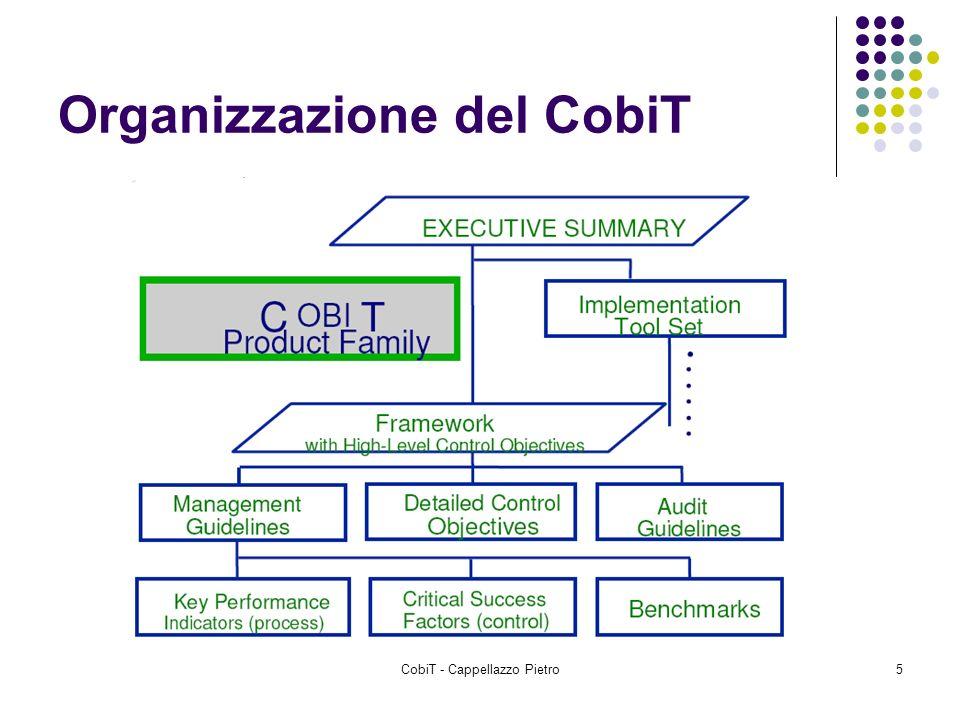 Organizzazione del CobiT
