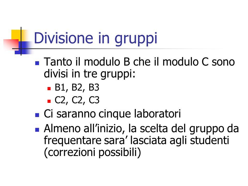 Divisione in gruppi Tanto il modulo B che il modulo C sono divisi in tre gruppi: B1, B2, B3. C2, C2, C3.