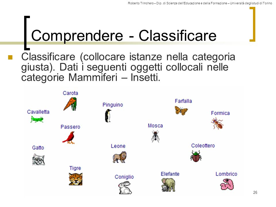 Comprendere - Classificare