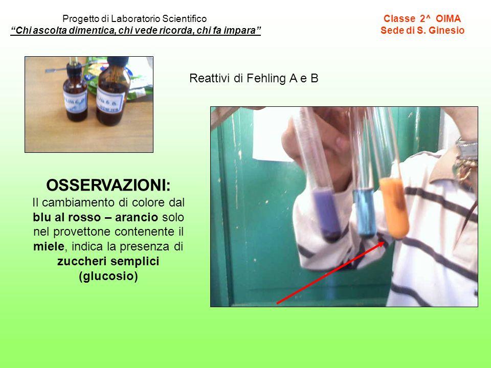 Reattivi di Fehling A e B