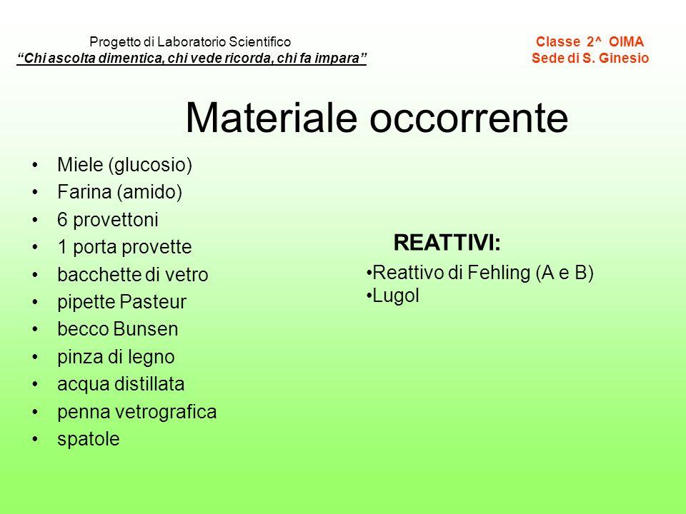 Materiale occorrente REATTIVI: Miele (glucosio) Farina (amido)