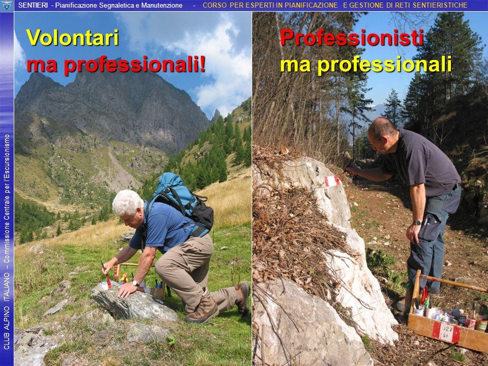 Volontari ma professionali! Professionisti ma professionali