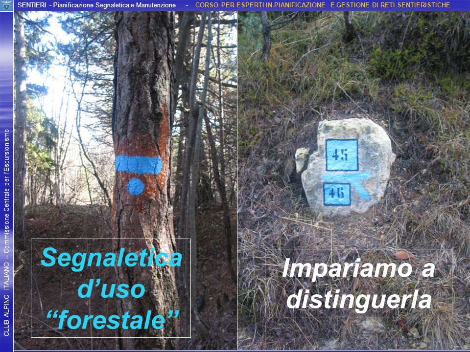 Segnaletica d'uso forestale Impariamo a distinguerla