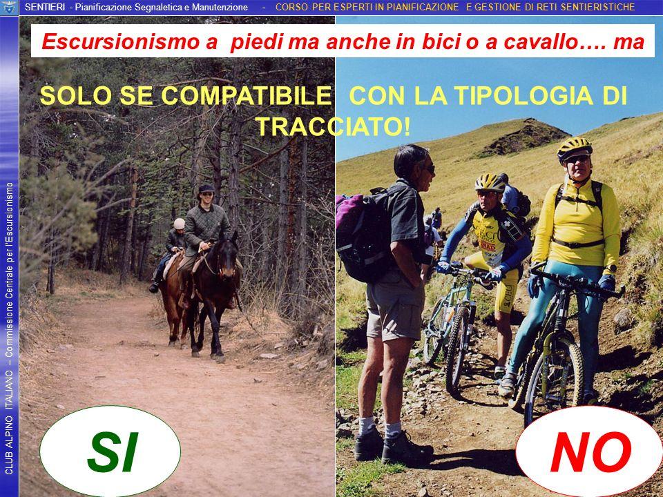SI NO SOLO SE COMPATIBILE CON LA TIPOLOGIA DI TRACCIATO!