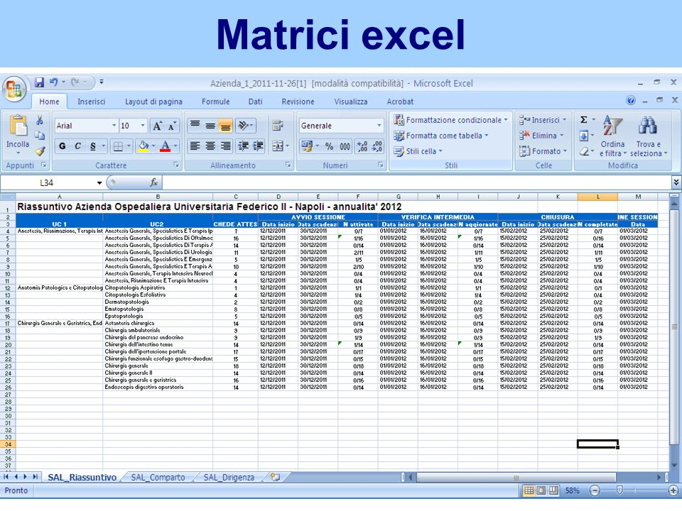 Matrici excel Report di riepilogo con dettaglio numerico e percentuali di avanzamento per UOC. PDF.