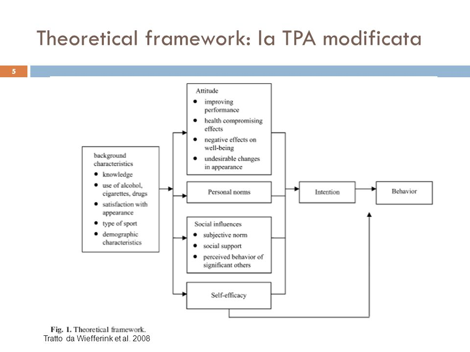 Theoretical framework: la TPA modificata