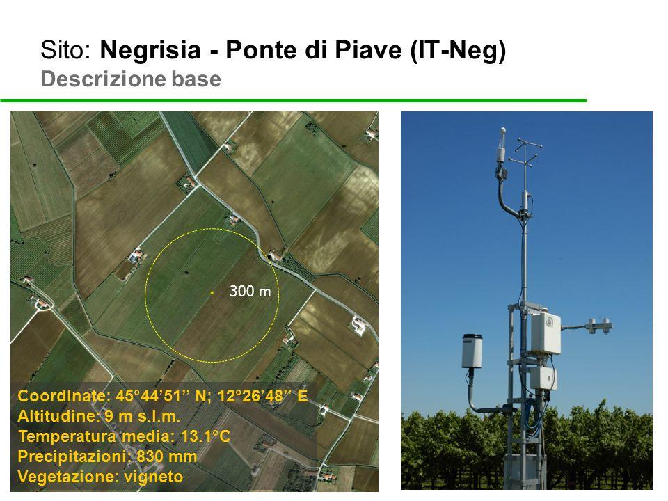 Sito: Negrisia - Ponte di Piave (IT-Neg) Descrizione base