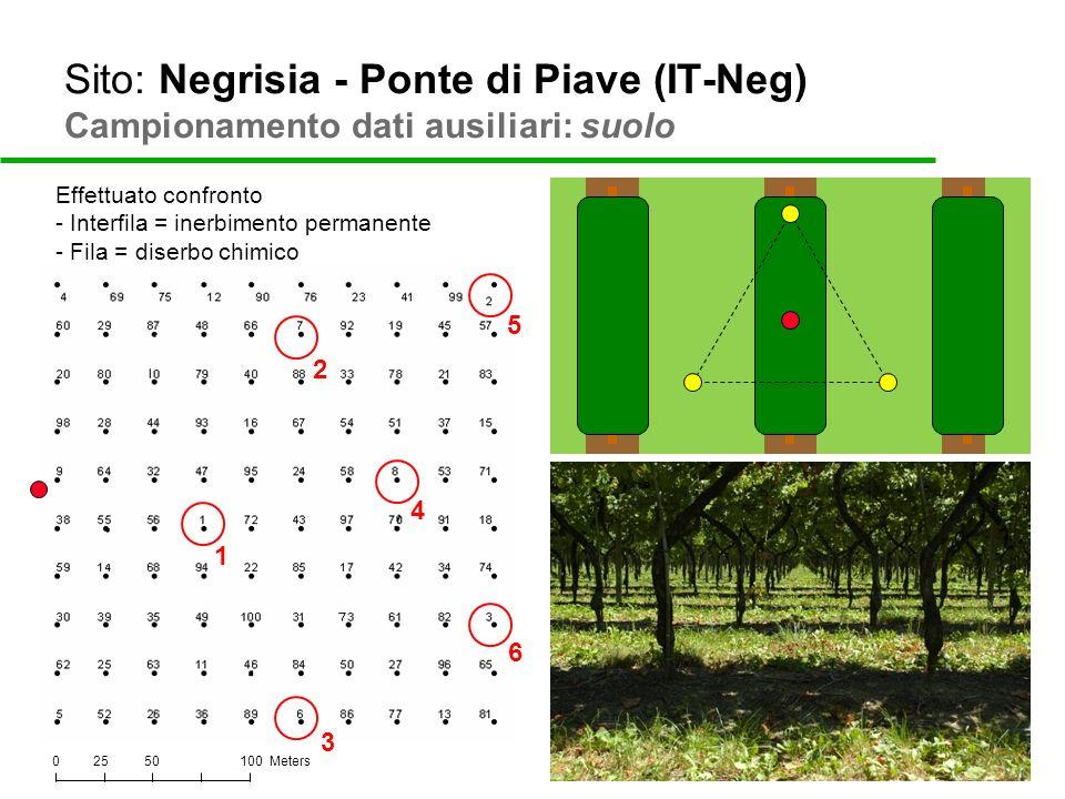 Sito: Negrisia - Ponte di Piave (IT-Neg) Campionamento dati ausiliari: suolo