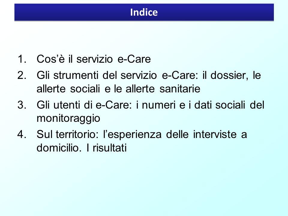 Indice Cos'è il servizio e-Care. Gli strumenti del servizio e-Care: il dossier, le allerte sociali e le allerte sanitarie.