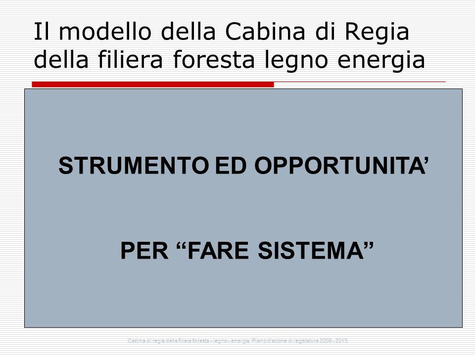 Il modello della Cabina di Regia della filiera foresta legno energia