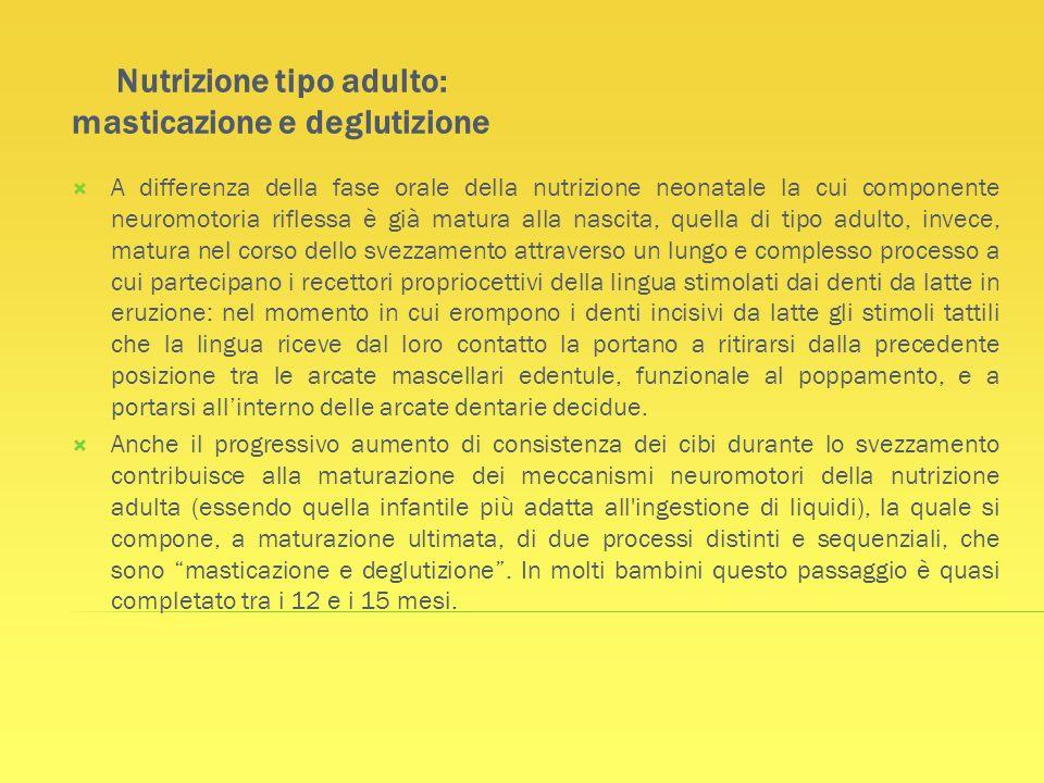 Nutrizione tipo adulto: masticazione e deglutizione