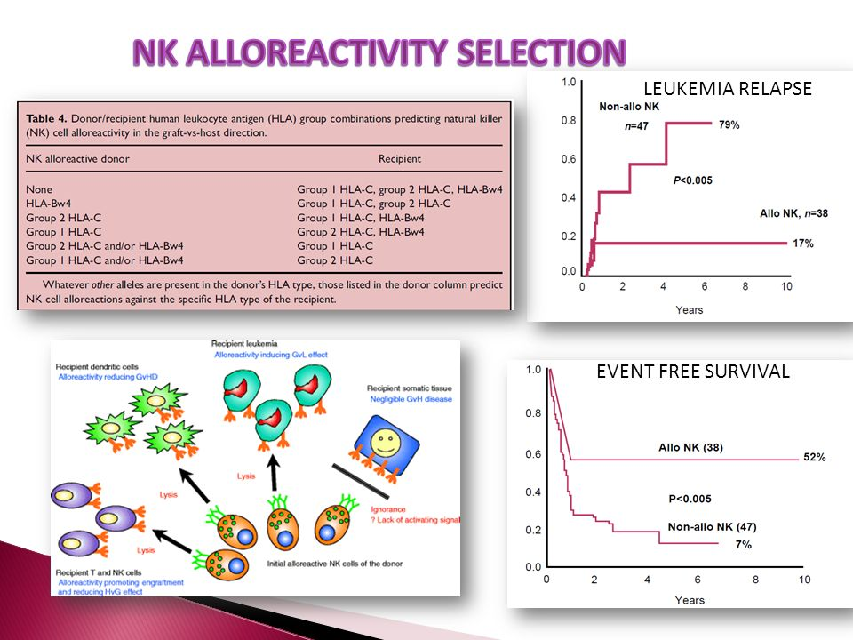 NK ALLOREACTIVITY SELECTION