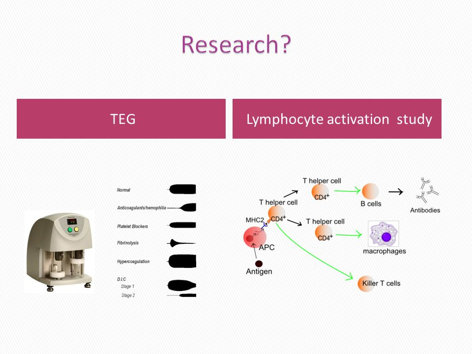Lymphocyte activation study